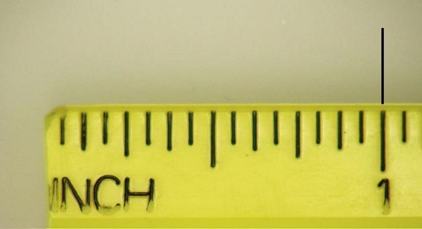 [Quy đổi] 1 inch bằng bao nhiêu cm, mm, m? 3 cách đơn giản nhất
